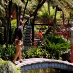 Madeira IV. Jardín Tropical Monte Palace