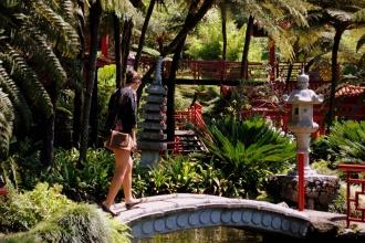 Jardín Tropical Monte Palace. Madeira 2013.