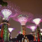 Qué ver en Singapur: Parte II